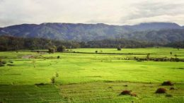 The Tangse valley, Aceh, 1990