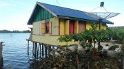Colorful stilt house - Banggai