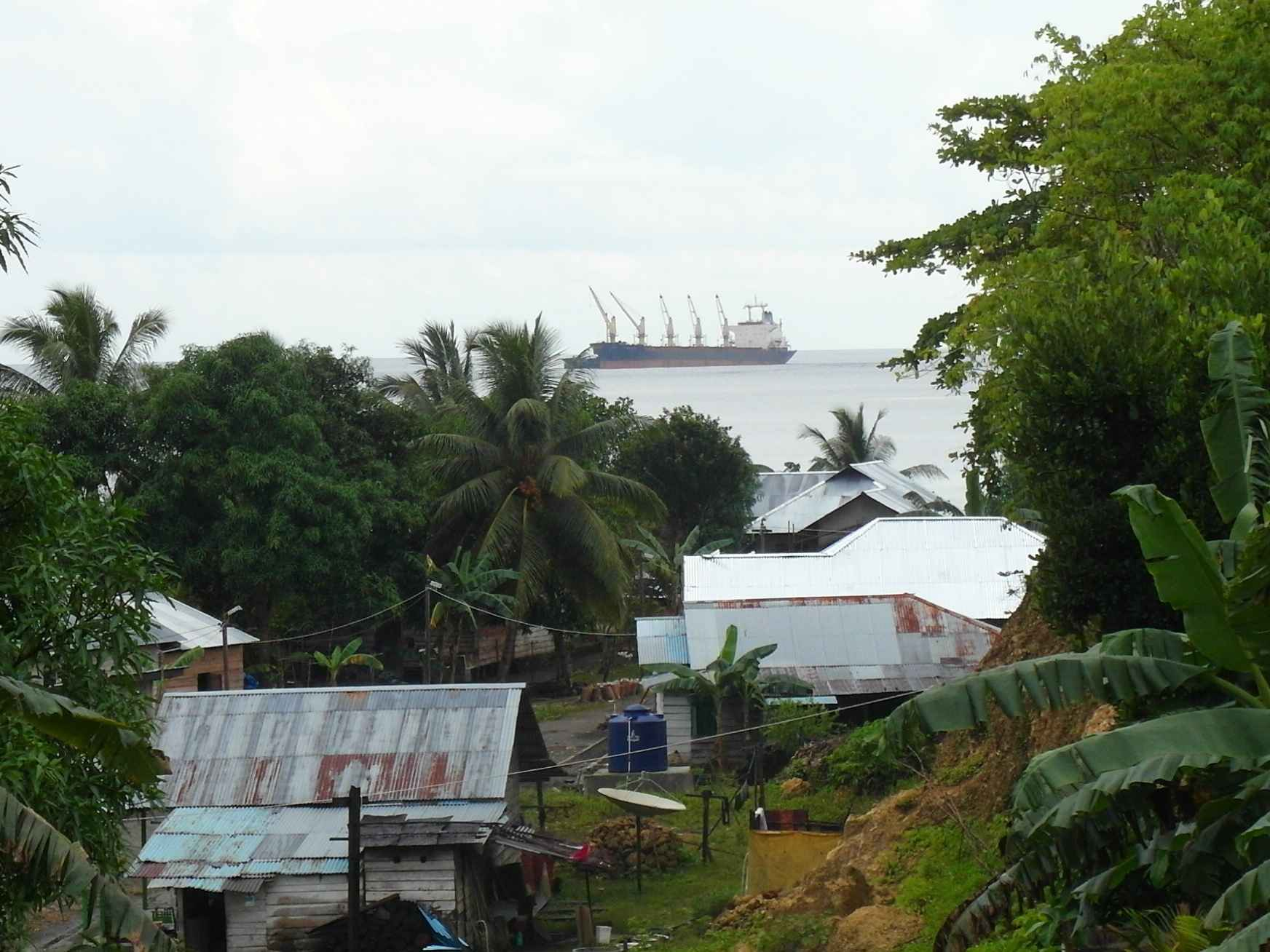 A Chinese ship waits to carry raw nickel out of Weda Bay