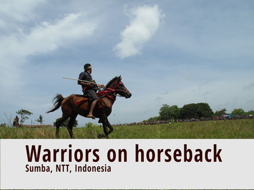 Warriors on horeseback: Jousting in Sumba