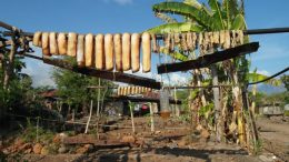 Whale meat hung out to dry
